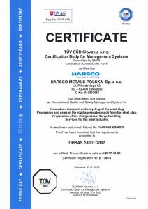 OHSAS_18001_2007_EN